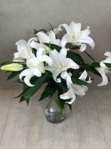 Snowwhite-flowers